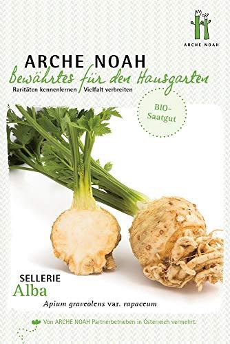 Arche Noah 6709 Sellerieknolle Alba (Bio-Selleriesamen)