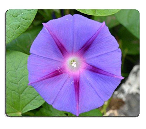 liili-tapis-de-souris-tapis-de-souris-en-caoutchouc-naturel-image-didentite-33528873-fleur-plante-mo