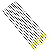 10x Flechas de Fibra de Vidrio Carbon para Tiro con Arco Recurvo | 78,5cm | tiro con arco [ARTUROLUDWIG]