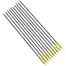 10x Flechas de Fibra de Vidrio Carbon para Tiro con Arco Recurvo | 78,5cm | tiro con arco [version:x10.1] by DELIAWINTERFEL