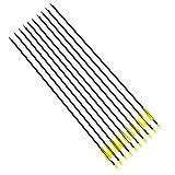 DeliaWinterfel 10 Fibra di Vetro Frecce Campo Punte Tiro con L'Arco, Compatibile Compound e ricurvo, 78,5cm by