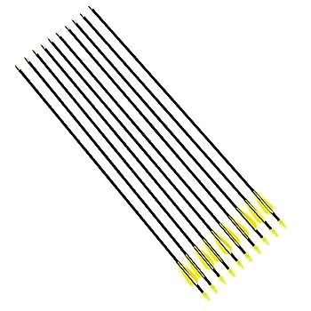 DeliaWinterfel 10x Flechas...