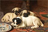 POSTERLOUNGE Wood print 120 x 80 cm: Dinner, two Pugs and a Terrier by Horatio Henry Couldery