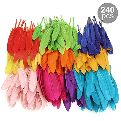 MWOOT Bunte Federn, 240 Stück bunt Gänsefedern, ideal als Dekoration zum Karnival für Halloween Fest Masken, Kostüme und Basteln für Kinder, Sicher und Ungiftig und Nicht verblassen (10-15 cm)
