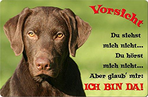 +++ LABRADOR Retriever - Metall WARNSCHILD Schild Hundeschild Sign - LAB 58 T2 BRA -