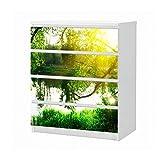 Set Möbelaufkleber für Ikea Kommode MALM 4 Fächer/Schubladen Landschaft Baum Birke Sonne Wasser Aufkleber Möbelfolie sticker (Ohne Möbel) Folie 25B168