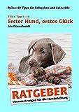 Erster Hund, erstes Glück: Voraussetzungen für die Hundehaltung (50 Tipps für Sofawölfe)