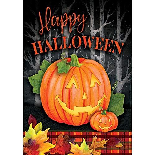Custom Decor Happy Halloween - Halloween Jack - Gartengröße, dekorative doppelseitige, lizenzierte und urheberrechtlich geschützte Flagge - gedruckt in den USA Inc. - ca. 30,5 x 45,7 cm Gr.