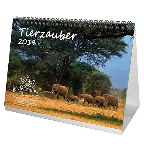 Animales mágica · DIN A5· Premium mesa/Calendario 2019· Animales · Wildnis ·...