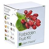 Kit Verbotene Früchte von Plant Theatre - 5 Köstliche Früchte wachsen - Ein tolles Geschenk -
