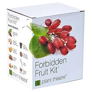Kit Verbotene Früchte von Plant Theatre – 5 Köstliche Früchte wachsen – Ein tolles Geschenk