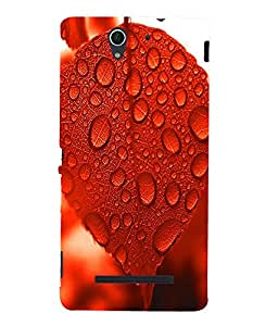 Citydreamz Red Leaf\Dew Drops\Nature Hard Polycarbonate Designer Back Case Cover For Sony Xperia C3