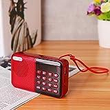 HITSAN INCORPORATION Digital AM/FM Pocket Radio World Band Receiver Speaker AUX USB TF