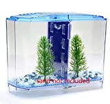 New 2 Rooms Betta Fish Breeding Boxes Double Guppies Hatching Incubator Isolation Acrylic