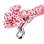 Floral Pattern Tiny Small Dog Harness Leash Lead Walking Chest Strap (M, Pink) 16