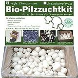 Bio Champignons einfach selber züchten als Komplettset im Pilzzuchtkarton...