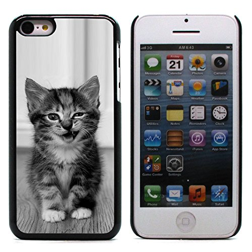 Graphic4You Baby Cats Love Tier Design Harte Hülle Case Tasche Schutzhülle für Apple iPhone 5C Design #3