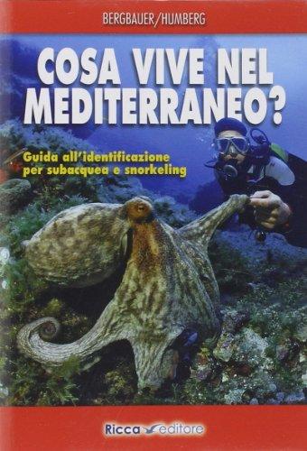 Cosa vive nel Mediterraneo? Guida all'identificazione per i subacquea e snorkeling