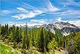 Holzbild 60 x 40 cm: Ultra breiter Panoramablick der Alpen im Frühjahr, im Wald, im Tal und in den snowcapped Bergen von Fabio Lamanna