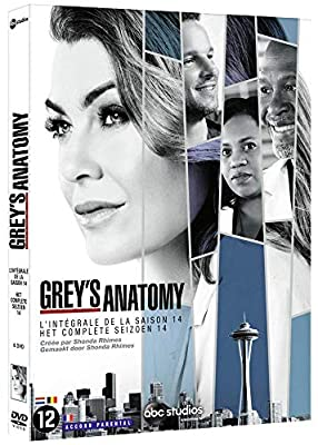Grey's Anatomy - Saison 14 [DVD]