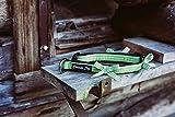 Bavarian Dogs Grünes Kariertes Hundehalsband mit weichem Neopren und Schleifem für große, mittelgroße und kleine Hunde (XS 1,5 cm x 25-33 cm x 31 cm, Grün-Schwarz)