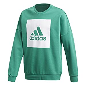 adidas Jungen Essentials Big Logo Sweatshirt