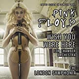 PINK FLOYD'S WISH YOU WERE HERE FOR CHAMBER ORCHESTRA: LIMITED EDITION ON BLACK AND WHITE SPLATTER VINYL