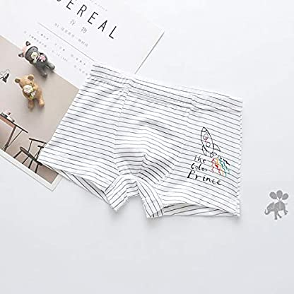 IPBEN 4Pcs Bóxers Niño Calzoncillos para Niños Algodón Diseño Bañador Bóxer Ropa Interior 2-13 Años