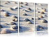 Conchiglie immagine sabbia arte effetto pastello 3 pezzi picture tela 120x80 su tela in, XXL enormi immagini completamente Pagina con la barella, stampe d'arte sul murale cornice gänstiger come la pittura o un dipinto ad olio, non un manifesto o un banner,