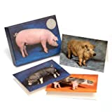Beautiful Pigs: 20 Notecards with 4 Different Portraits, Complete with Envelopes