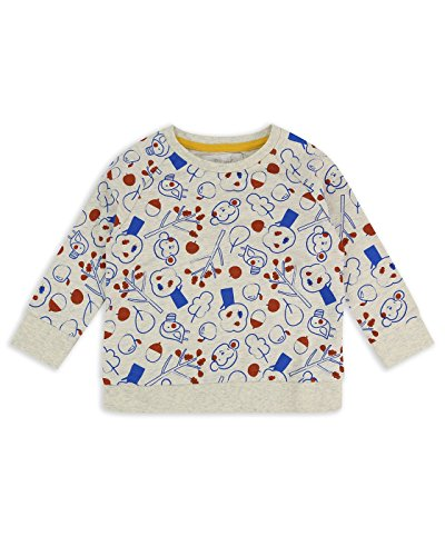 The Essential One - Baby Kinder Jungen Affe Pullover/Sweater/Sweatshirt - Grau - 18-24m - EOT621 (Kinder-sweatshirt Affe)