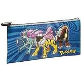 Porta Todo Plano Pokemon 21x10,5cm