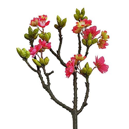 Ingrirt5Dulles 1 stück künstliche Kirsche Blume Foto Requisiten Hochzeit Home Office Shop Blume dekor - mehrfarben optional Rose Rot - Optional Kirsche