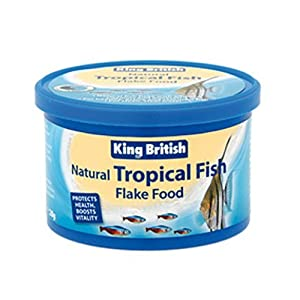 28g King British Tropical Fish Flake Aquarium Food by King British