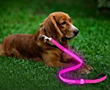 Moco Best Light Up Rechargeable 2 Strip LED Nylon Dog Leash – 47.2 inches, with 3 Light Settings and Metal Buckle - Includes USB Charger - Keep Pet Safe and Visible at All Times