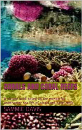 Great Barrier Reef and Beyond - Corals and Coral Reefs: An ocean adventure through the Great Barrier Reefs and beyond! (English Edition) -