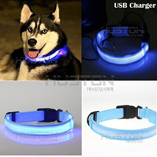 Aution House Migliorata Dog visibilità e sicurezza - USB ricaricabile - collare LED di sicurezza per cani - regolabile lampeggiante Collare - 3 modalità di scatto - 7 Colori e 5 misure - il collegamento ai dispositivi - No Batterie - Grande divertimento (BLU