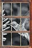 Stil.Zeit Monocrome, Kleiner Kolibri an rosafarbener Blüte Fenster im 3D-Look, Wand- oder Türaufkleber Format: 62x42cm, Wandsticker, Wandtattoo, Wanddekoration