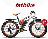 RICH BIT ZDC 022 48V VTT électrique de 26 Pouces, vélo électrique de Montagne, 1000W 17Ah E-Bike