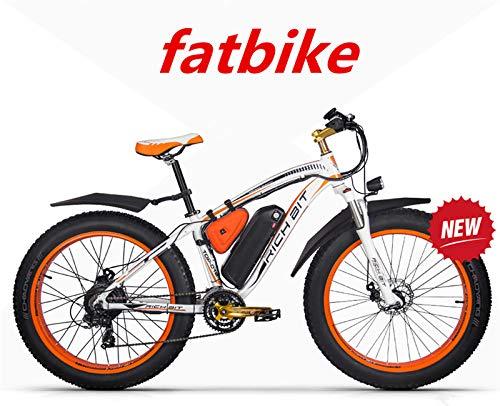 RICHBIT ZDC 022 48V, 26″ Zoll E-MTB, Mountainbike E-Bik… | 00735314436831