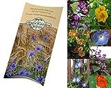 Saatgut Set: 'Kletterpflanzen', 3 einjährige, blühende Sorten als Samen in schöner Geschenk-Verpackung