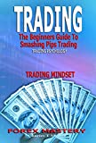 Trading: The Beginners Guide To Smashing Pips Trading, Tips to Successful Trading, Trading Mindset, Trading Psychology, Forex Mastery (English Edition)