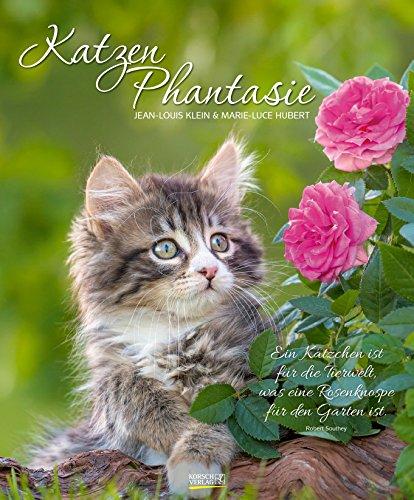 Katzen Phantasie 2019: Großer Wandkalender. Foto-Kunstkalender - Katzenkalender mit literarischen Zitaten. 55 x 45,5 cm