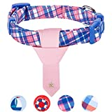 Blueberry Pet Mehrtöniges Schottenkaro Stil Krawatte Hundehalsband, M, Hals 37cm-50cm