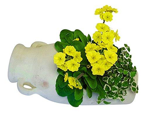 Pflanzgefäß Amphore liegend aus Terracotta Blumentopf Garten Deko 41x22x20 cm