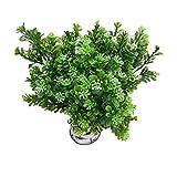 meisijia 1 Niederlassung Aglaia Odorata Künstliche Blumen Home Virescence Hochzeit Dekoration