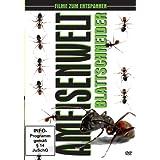 Ameisenwelt - Blattschneider
