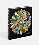 Image de Plant exploring the botanical world. Ediz. illustrata
