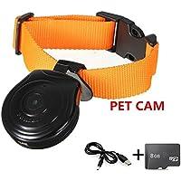 Oumeiou - Collar para mascotas con cámara grabadora de vídeo, monitor de seguridad con 8GB tarjeta de memoria para perros, gatos y cachorros