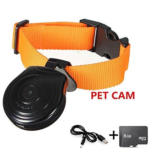 Oumeiou - Collar para mascotas con cámara grabadora de vídeo, monitor de...